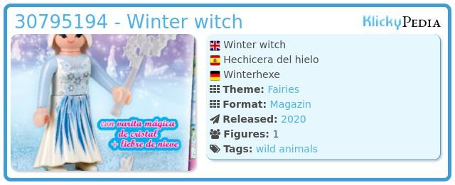 Playmobil 30795194 - Winter witch