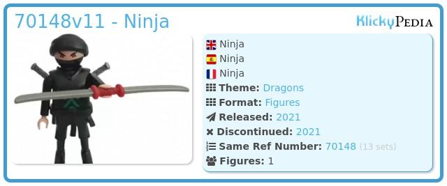 Playmobil 70148v11 - Ninja