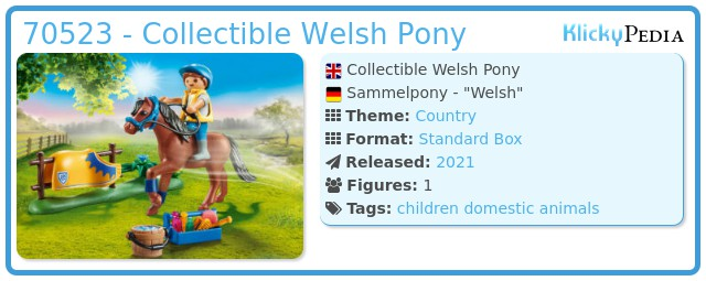 Playmobil 70523 - Collector Pony - Welsh