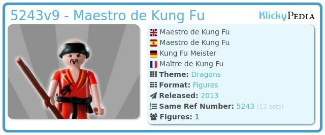 Playmobil 5243v9 - Maestro de Kung Fu