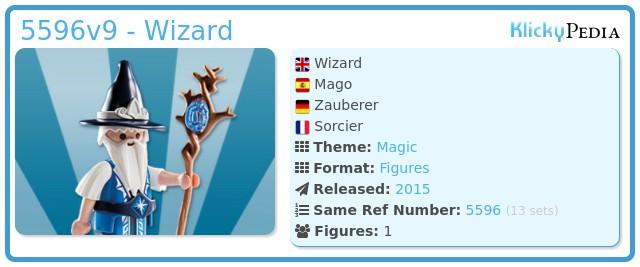 Playmobil 5596v9 - Wizard