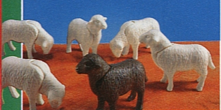 Playmobil - 7010 - 6 Sheep