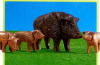 Playmobil - 7265 - Wild Pig With 3 Young
