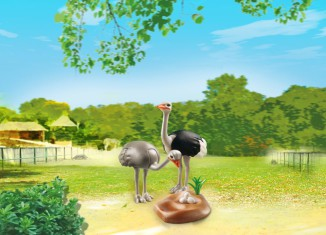 Playmobil - 6646 - Ostrich Couple with Nest