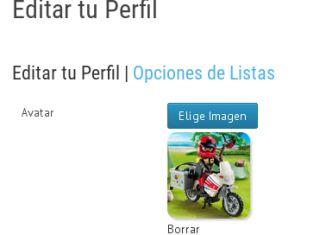 Playmobil - ¿Cuáles son las dimensiones máximas permitidas para la foto de perfil?