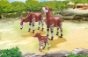 Playmobil - 6643 - 2 okapi with baby