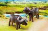 Playmobil - 6944 - African buffalos