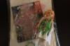 Playmobil - 0000 - Flower fairy - free promotional