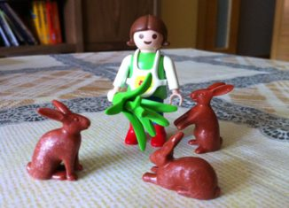 Playmobil - 0000v3 - Girl with rabbits - Coolee