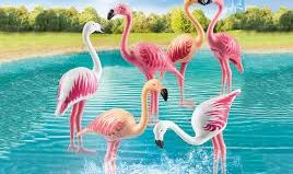Playmobil - 70351 - Group of flamingos