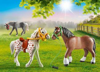 Playmobil - 70683 - 3 Horses
