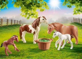 Playmobil - 70682 - Ponies with foals