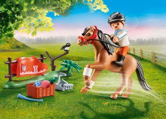 Playmobil - 70516 - Collectible Connemara Pony