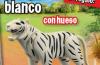 Playmobil - 30742620-esp - WHITE TIGER